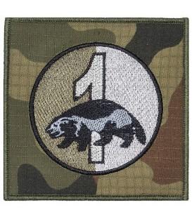 1 Batalion Piechoty Zmotoryzowanej 17 WBZ